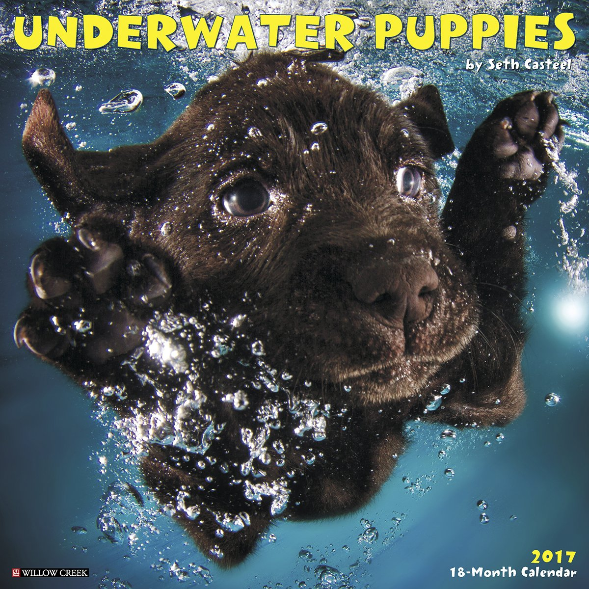 Underwater Puppies 2017 Wall Calendar product image