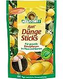 Neudorff 00276Azet Sticks pour plants d'agrumes, 40pièces