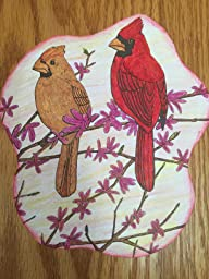 Fifty Favorite Birds Coloring Book Dover Nature Coloring