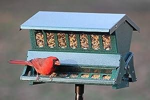 Woodlink Absolute II Bird Feeder