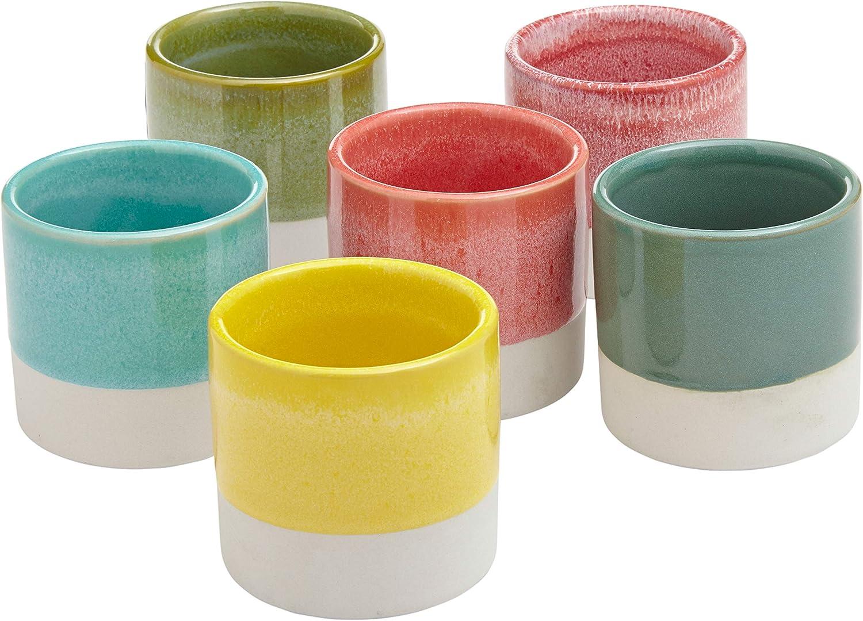 Amazon Brand – Rivet Modern Colorful Stoneware Garden Planter Flower Pot Set - Set of 6, 2.95 Inch, Multicolor
