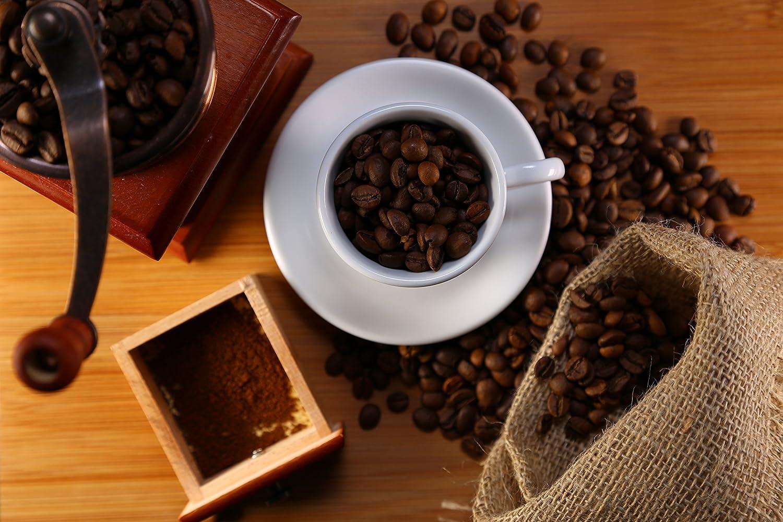 Gourmia GCG9310 Manual Coffee Grinder Artisanal Hand Crank Coffee Mill With Grind Settings /& Catch Drawer 11.5 x 11.5 x 17.5 cm