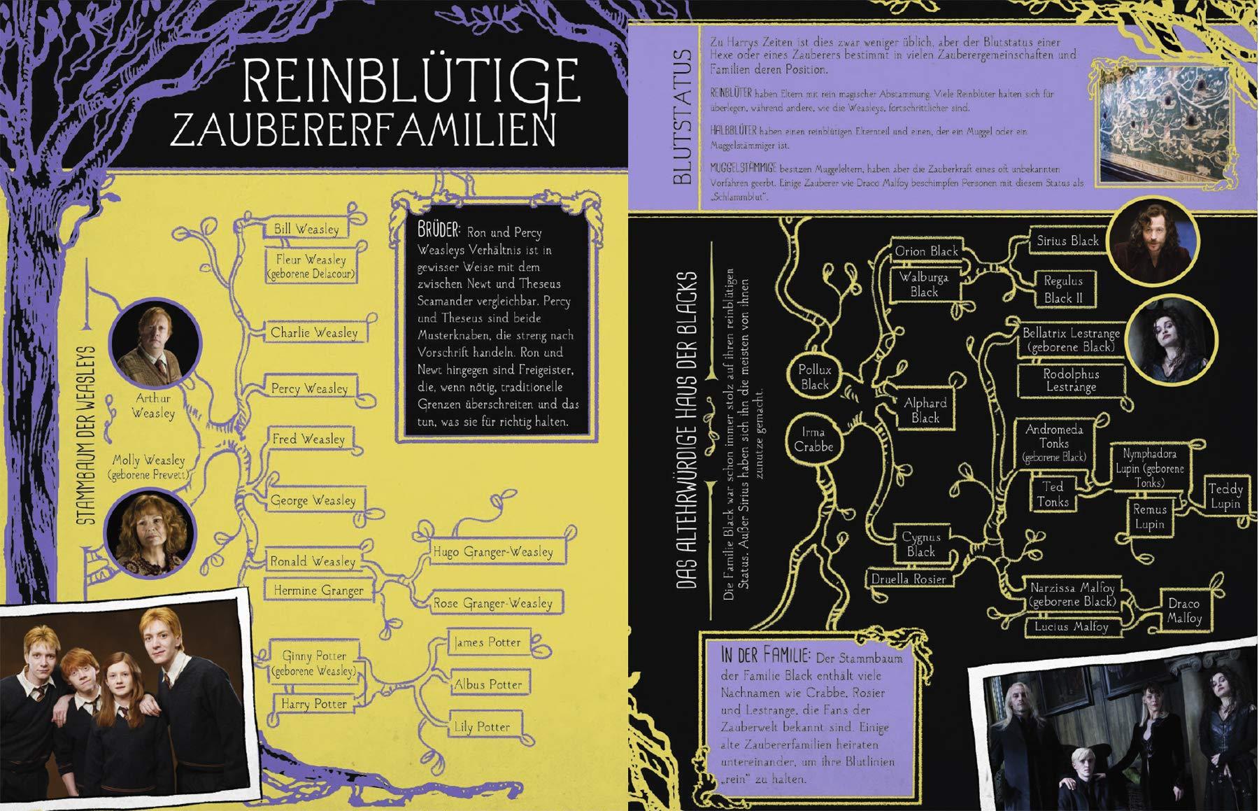 Harry Potter & Phantastische Tierwesen: Das große Buch der ...