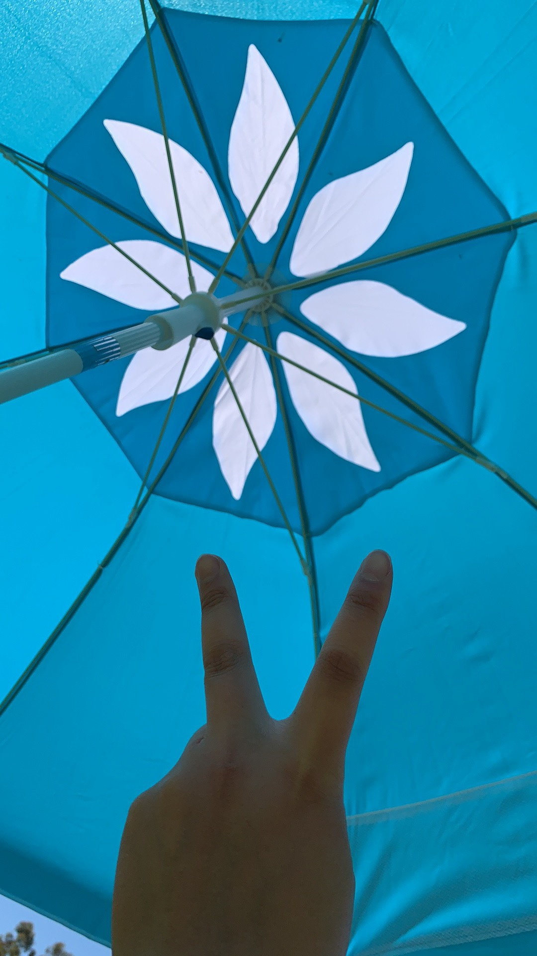 NiceC Beach Umbrella 6.5ft Portable Adjustable Tilt with Sand Anchor, Aluminum Patio Umbrella Outdoor, Pool, Garden UV 50+ with Carry Case photo review