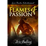 Flames of Passion (The Gems & Gents Series)