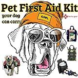 FabFur Gear Pet First Aid Kit- Certified Cat