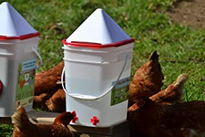 5 Gallon Chicken Waterer - 4 Horizontal Side Mount Poultry Nipples - for Up to 30 Chickens - Coop Feeder