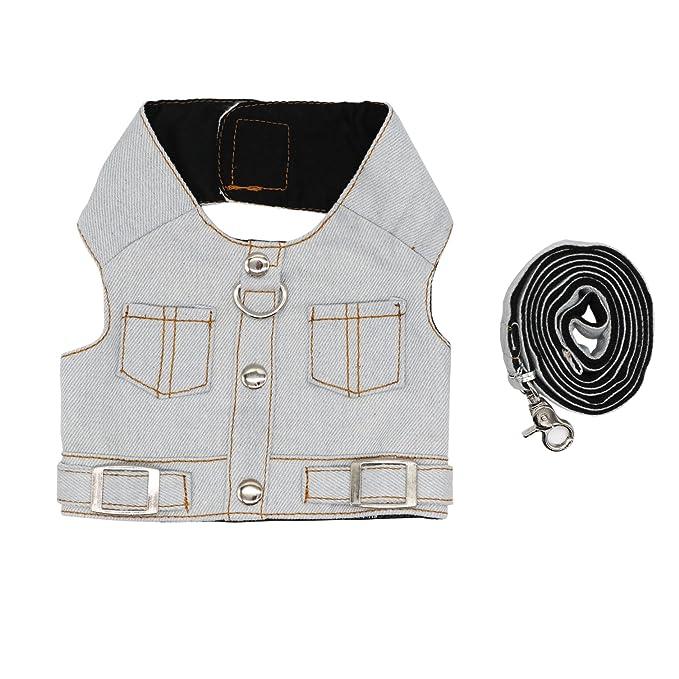 Cat Jeans chaqueta arnés chaleco con plomo a juego Set: Amazon.es ...