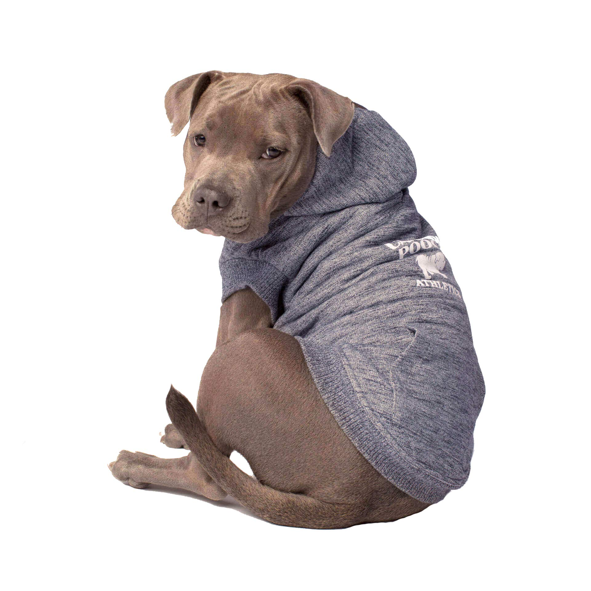 Canada Pooch Cozy Caribou Sherpa Lined Fleece Dog Hoodie, Charcoal, Size 28
