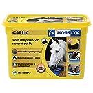 Horslyx Garlic Horse Lick - 5kg