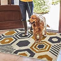 Color&Geometry Felpudo de Entrada, Interior Alfombra Antideslizante, Tapete para Puerta Lavable a Máquina, Absorbente…