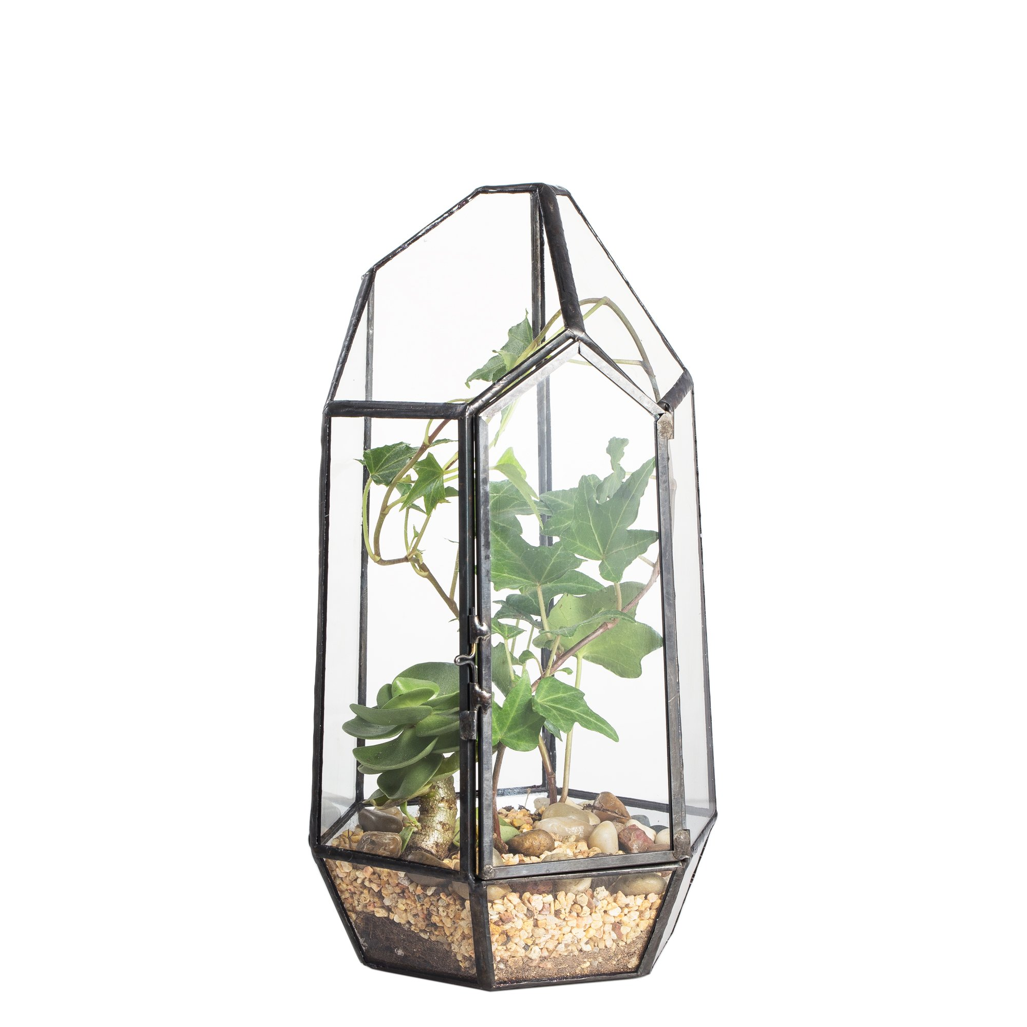 8.66'' Height Closed Irregular Glass Terrarium with Door Succulent Planter Geometric Flower Plant Pot Tabletop Small Bonsai Reptile Container Desktop Display Box Candle Holder Gift by NCYP