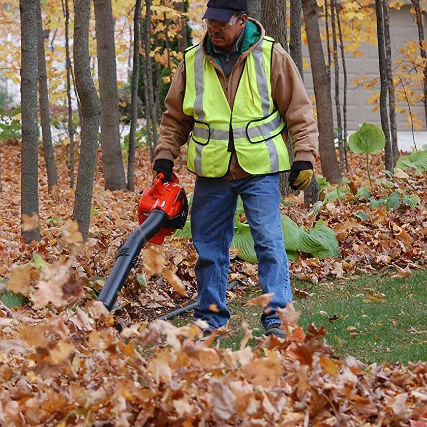 The Most Powerful Leaf Blowers (2019): Is It The Best Blower for You?