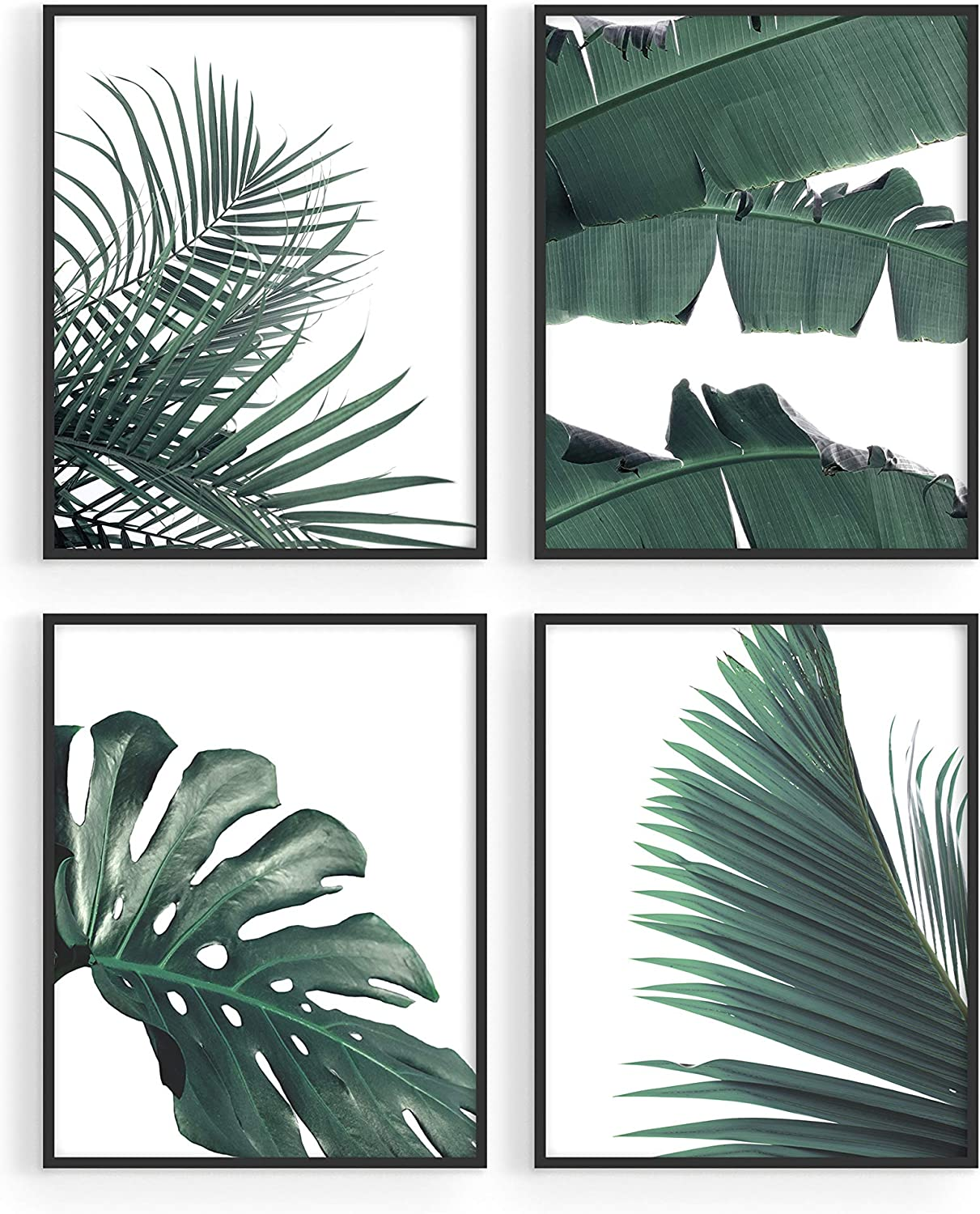 "Plant Pictures and Botanical Prints Set - by Haus and Hues | Set of 4 Tropical Leaves Wall Art and Leaf Pictures for Wall | Botanical Prints Wall Art | Palm Leaf Wall Decor (8""x10"" UNFRAMED)"