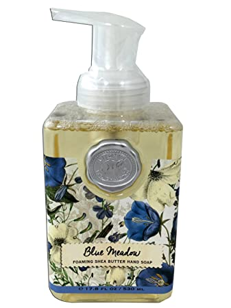 Amazoncom Michel Design Work Foaming Shea Butter Hand Soap Blue