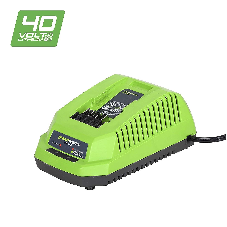 Greenworks Tools 2904607 Cargador VDE 40 V: Amazon.es: Bricolaje y ...