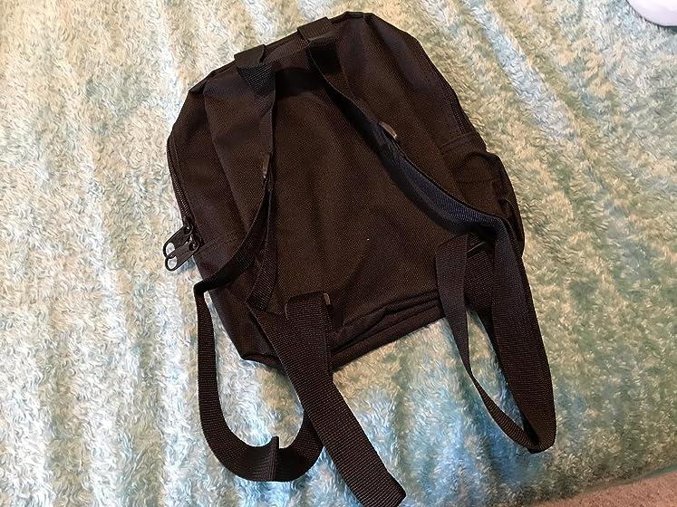 Dickies Mini Backpack, Black Basic but what I wanted!