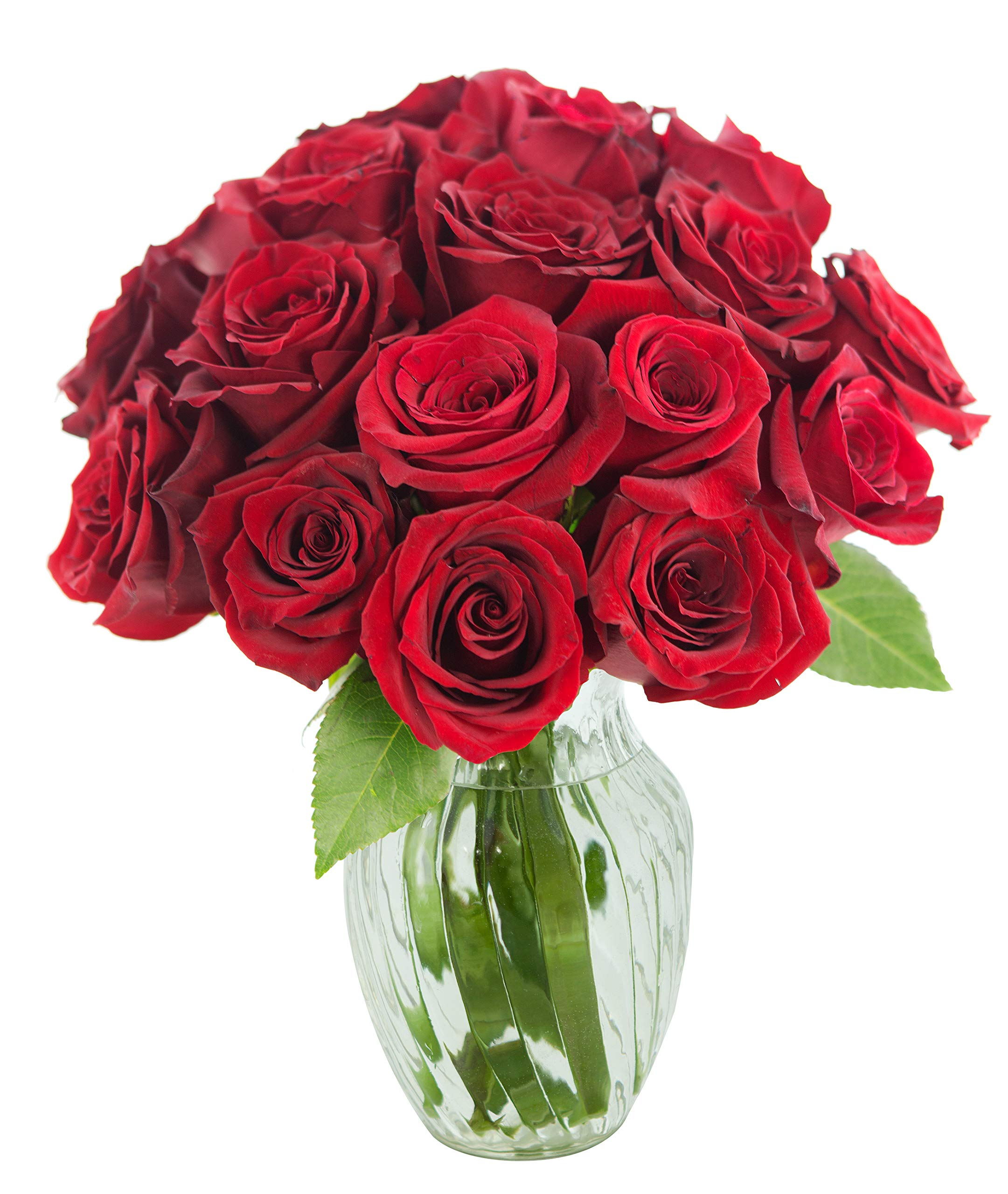 KaBloom The Romantic Classic Bouquet of 18 Fresh Red Roses (Farm-Fresh, Long-Stem) with Vase by KaBloom