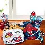 Zak Designs SPIO-0010-D Marvel Comics Kids