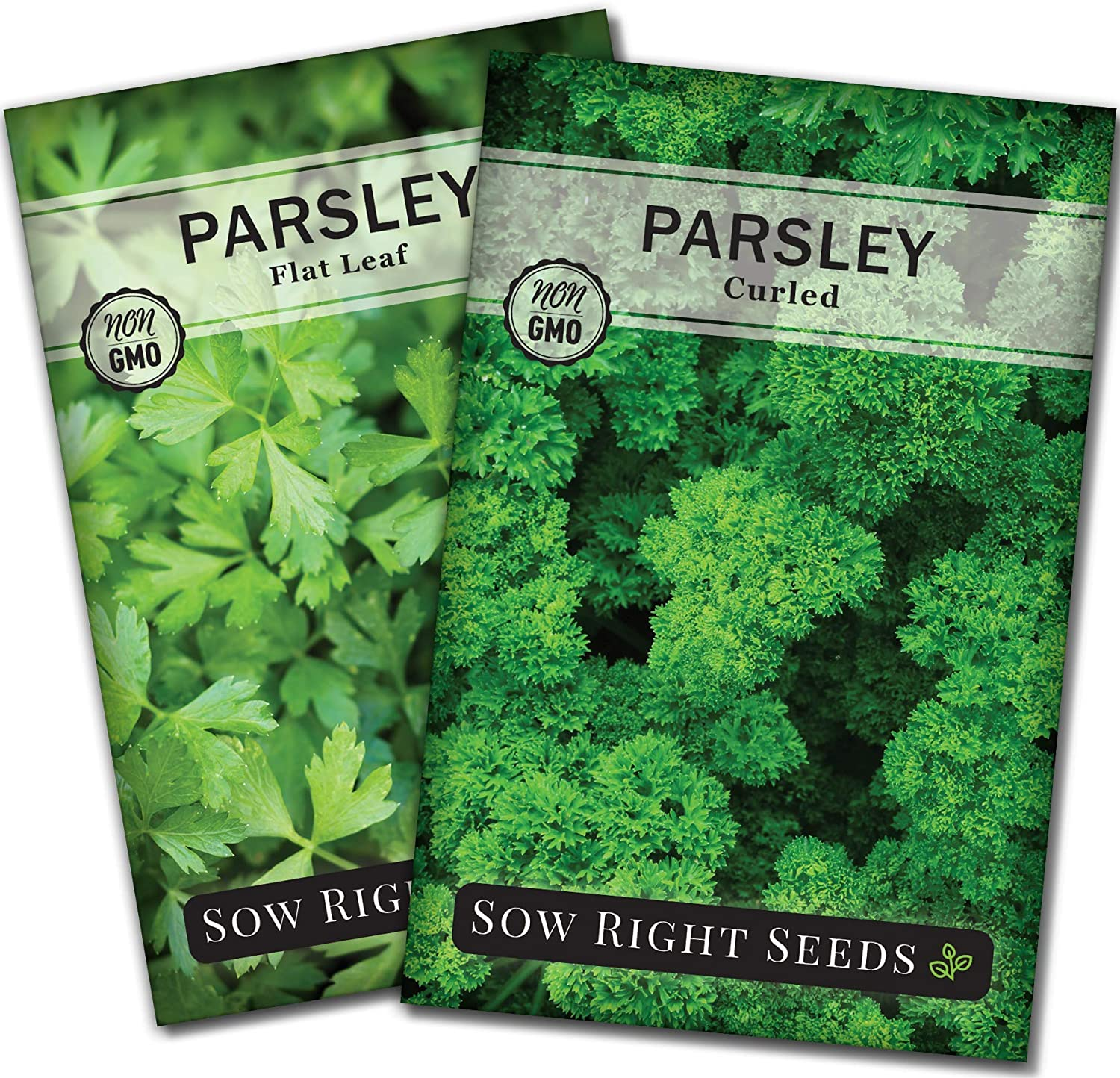 Sow Right Seeds - Flat and Curly Leaf Parsley Seed Collection for Planting - Non-GMO Heirloom - Instructions to Plant and Grow a Kitchen Herb Garden, Indoor or Outdoor; Great Gardening Gift