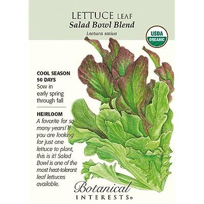Salad Bowl Blend Leaf Lettuce Seeds - 1.5 g - Organic : Lettuce Plants : Garden & Outdoor