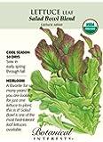 Salad Bowl Blend Leaf Lettuce Seeds - 1.5 g - Organic
