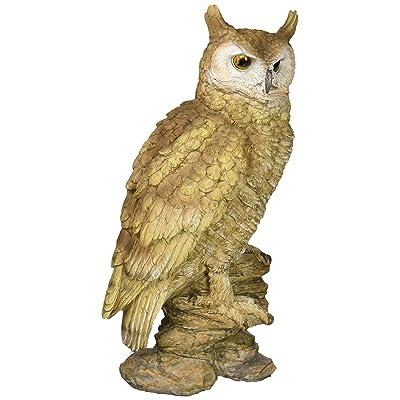 Design Toscano Perching Forest Owl Statue, Multicolored : Garden & Outdoor