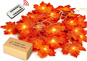 JamBer Maple Leaves String Light, 8 Blinking Modes with Remote/10Ft/Waterproof 20LED Garland Fairy Lights Suitable for Outdoor Wedding Party Fall Decor Christmas Thanksgiving Decorations(Warm White)