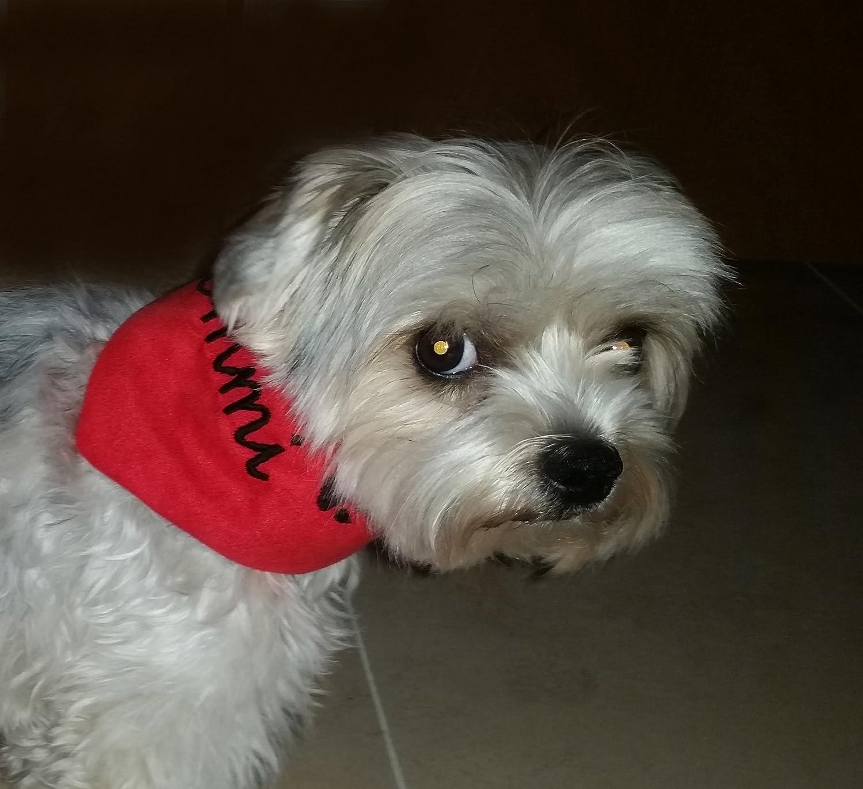 LunaChild Individuelles kuscheliges Hundetuch Größe XS , S , M , L , XL WUNSCHNAME Halstuch Hund Tuch Name Hundehalstuch rot