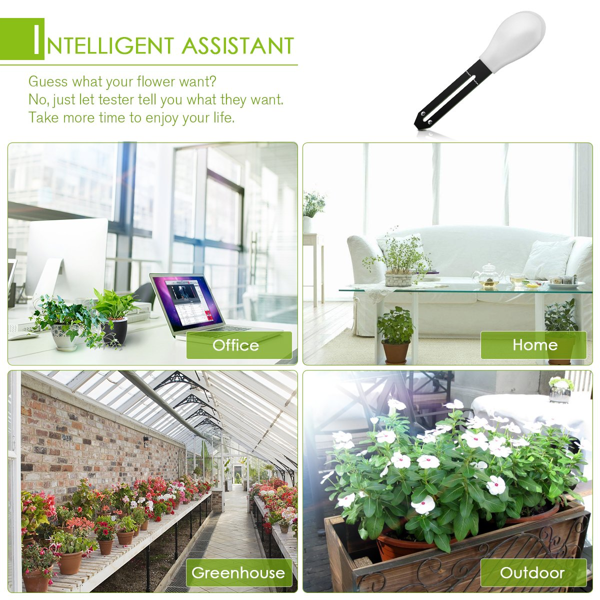 DIGOO DG-TRT1 3 in 1 Soil Tester Moisture Meter, Garden Potted Intelligent Plant Detector, Nutrient Monitor Light Tester White by DIGOO (Image #7)