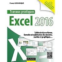 Travaux pratiques avec Excel 2016 - Saisie et mise en forme, formules et exploitation des données.: Saisie et mise en forme, formules et exploitation des données, courbes et graphiques.