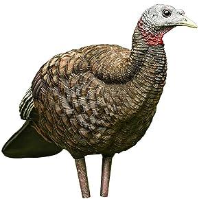 AvianX Breeder Turkey Decoy