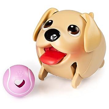 Most Inspiring Golden Retriever Chubby Adorable Dog - 81REGvuuUwL  Snapshot_474772  .jpg