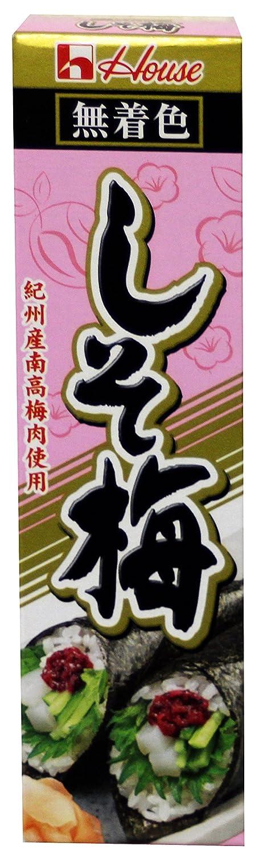 ??? ??? Salted Japanese Plum Paste in Tube (shiso Ume) 1.41 oz/ 40g (1 Pack)