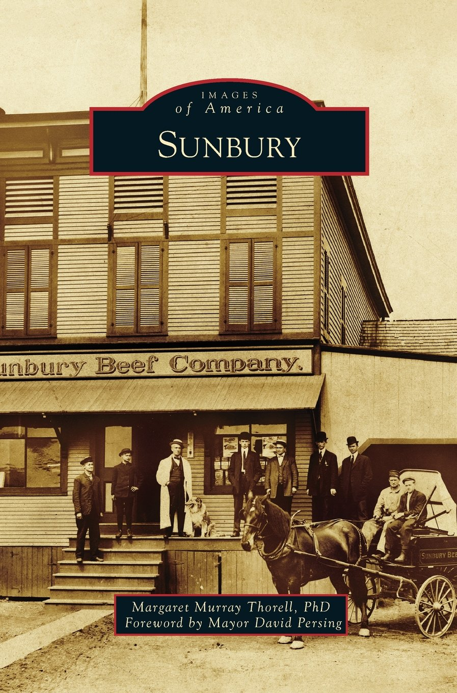 Download Sunbury ebook