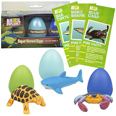 SCS Direct Animal Planet Ocean Sea Creature Eggs 3 Pack - Toys Hatch and Grow to 3X Size in Water - Includes Turtle, Shark, & Crab w Educational Fact Cards: Toys & Games