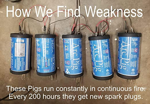 Arc Pig Arc Pig featured image 6
