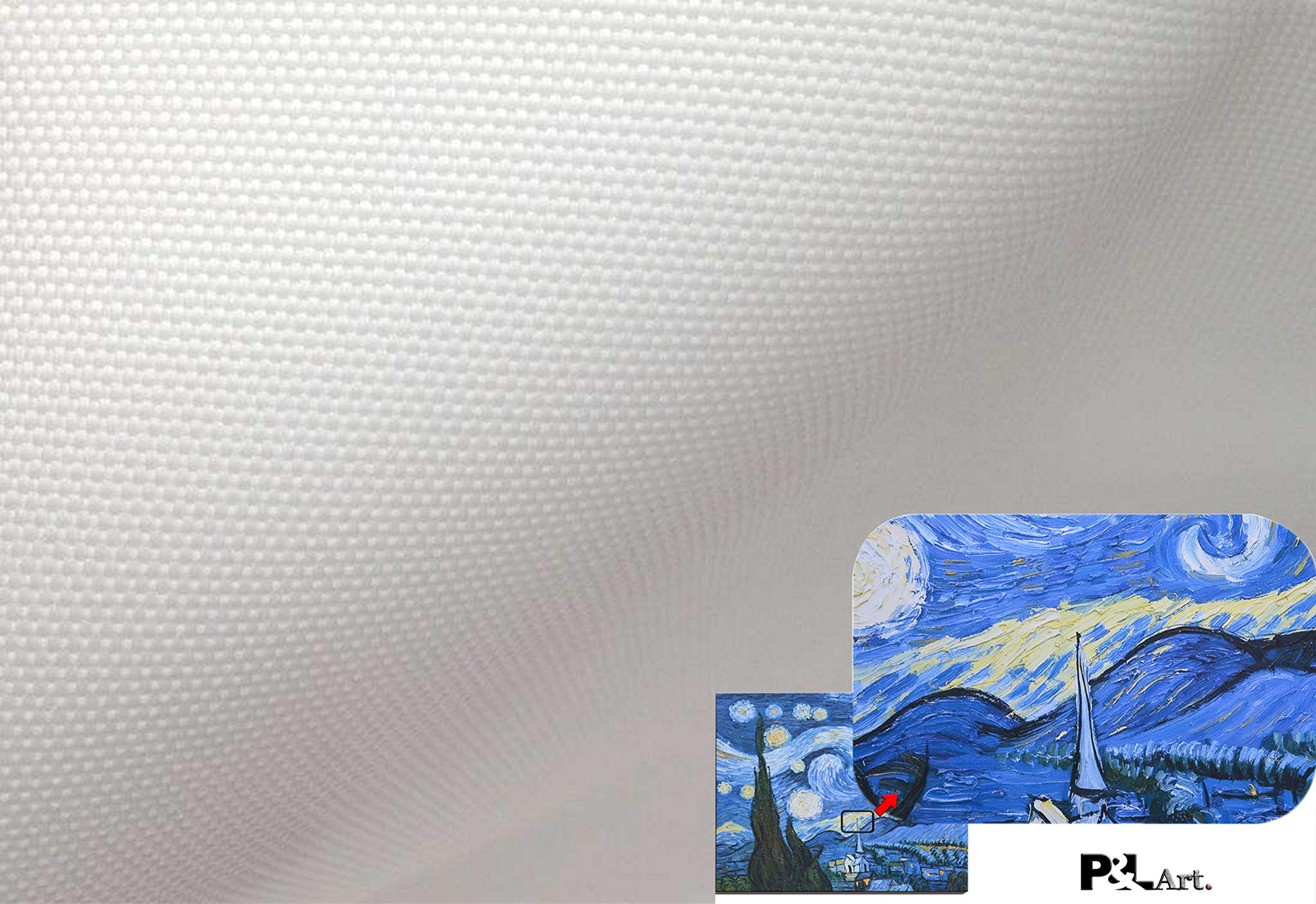 Professional Matte Canvas Roll 24''x100' 2 Rolls For Epson Canon HP inkjet printer,Surface Polyester Thick Canvas by P&L ART. (Image #4)