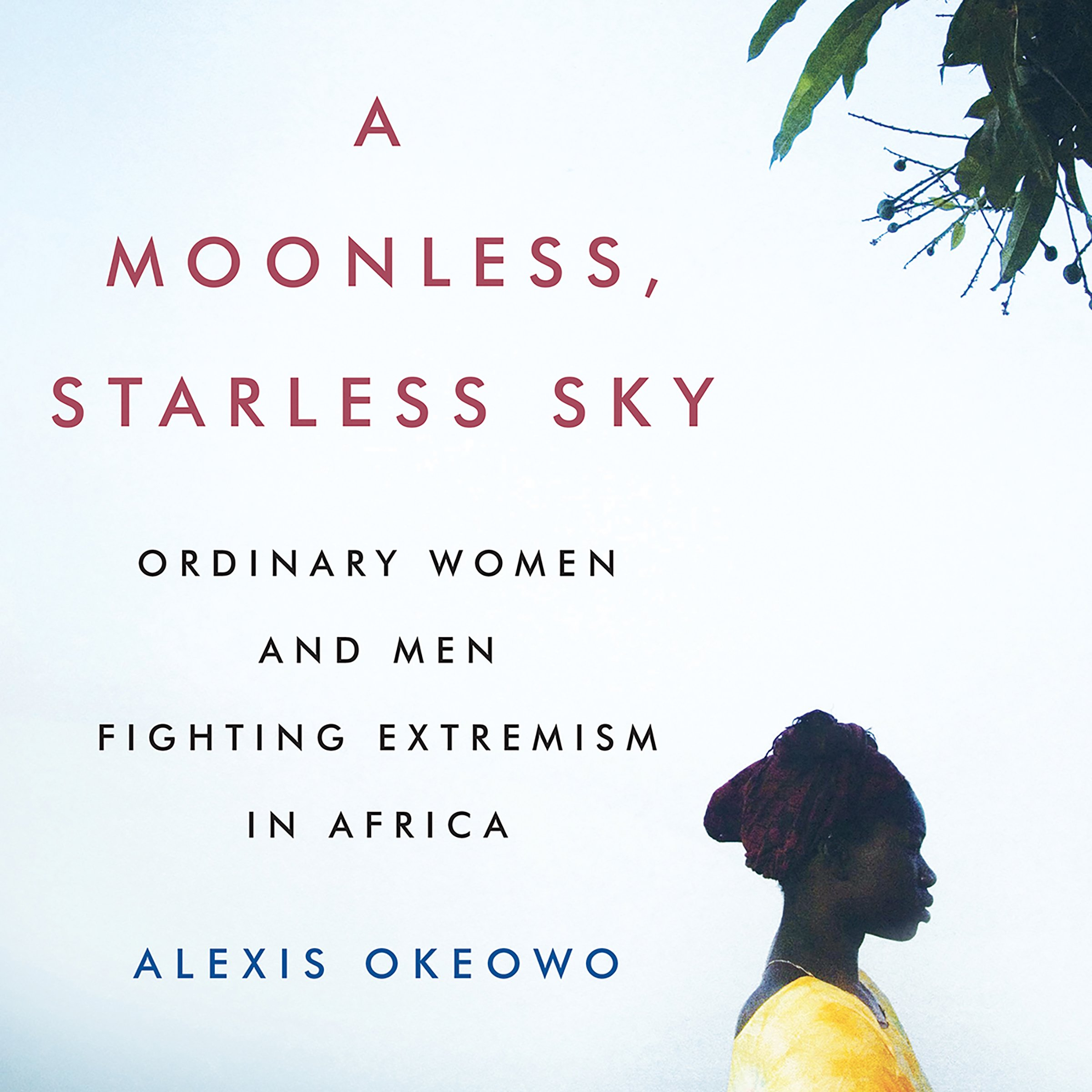 A Moonless, Starless Sky: Ordinary Women and Men Fighting Extremism in Africa by Unknown (Image #1)