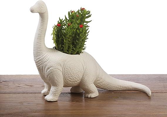 Brachiosaurus Plantosaurus - Dinosaur Planter - White