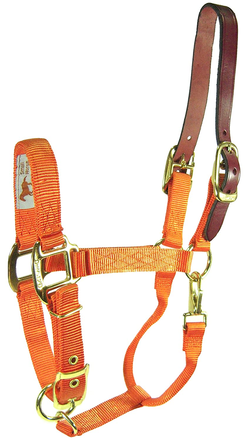 Hamilton 1-Inch Nylon Adjustable Horse Halter with Leather headpoll and Throat Snap, Yearling Size