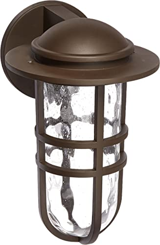 WAC Lighting WS-W24513-BZ Steampunk 13 LED Outdoor Wall Light Fixture, Large, Clear Bronze
