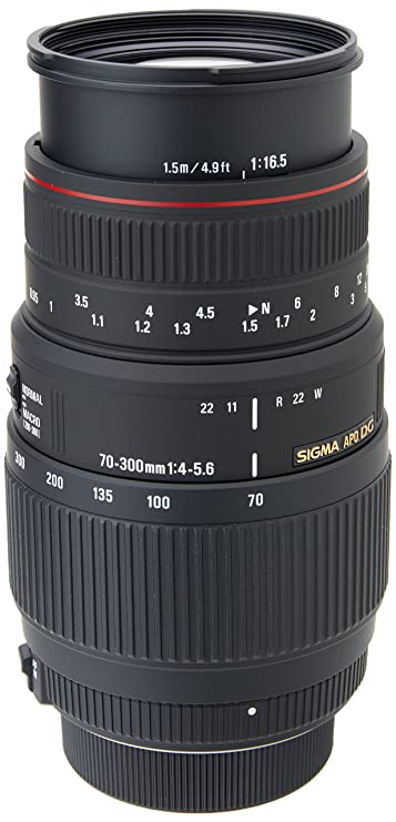 Review Sigma 70-300mm f/4-5.6 DG