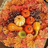 Amandir 182 Pcs Fall Decor for Home, Mini Artificial Pumpkins Decor Fake Maple Leaves Pine Cones Acorns Pomegranate for Thank