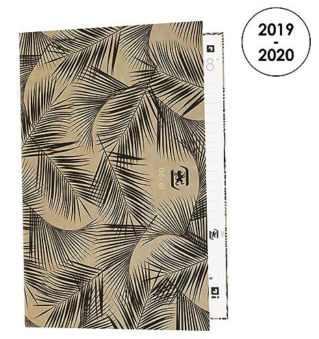 Amazon.com : Oxford Nude Kraft Daily School Diary 2019-2020 ...