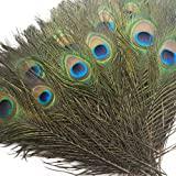 """Piokio 200 pcs Natural Peacock Feathers in Bulk 10""""-12"""" for Wedding Crafts Christmas Decorations"""