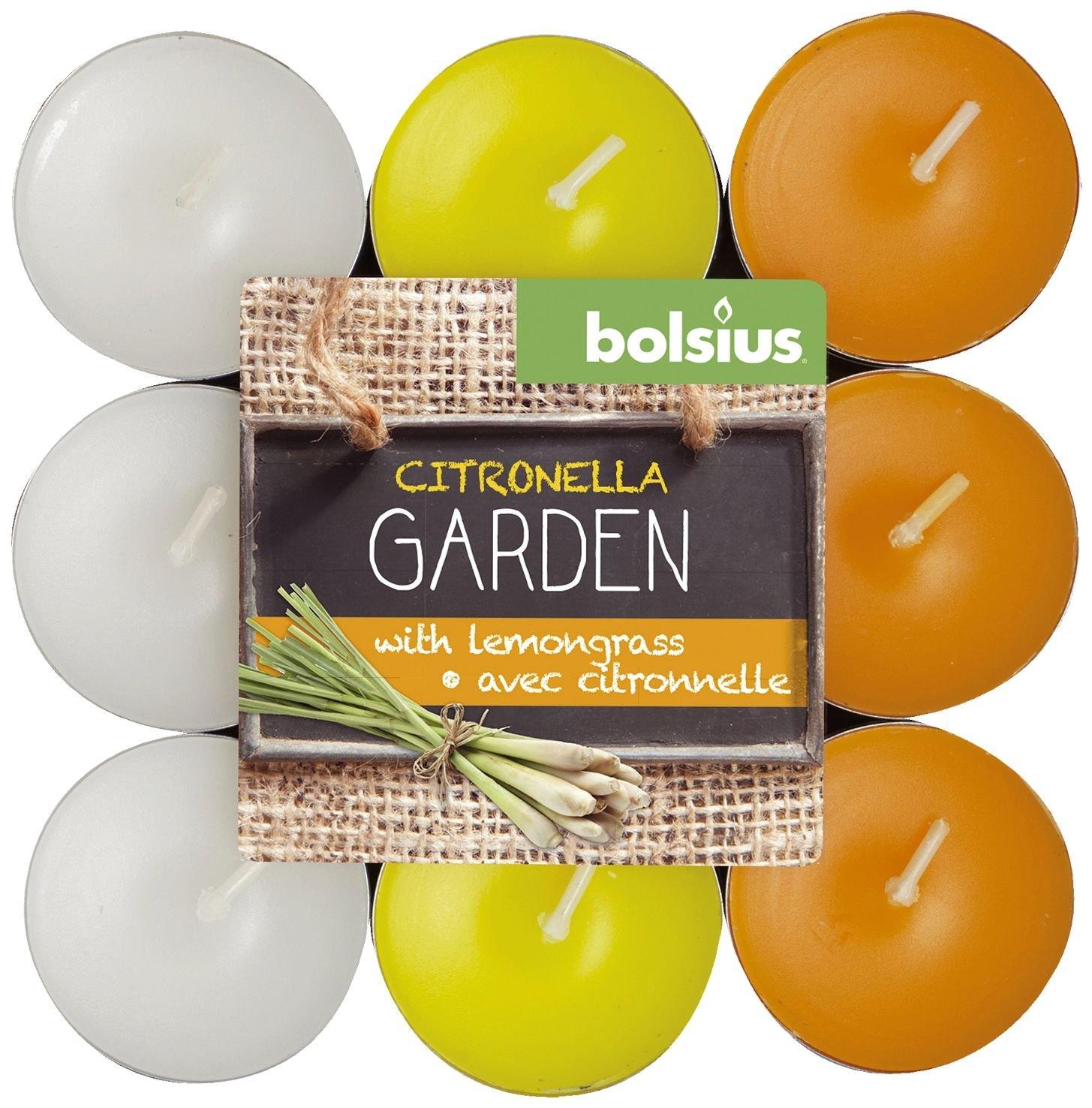 Bolsius Vela limón/Basil 18Piezas, Multicolor 8717847083562