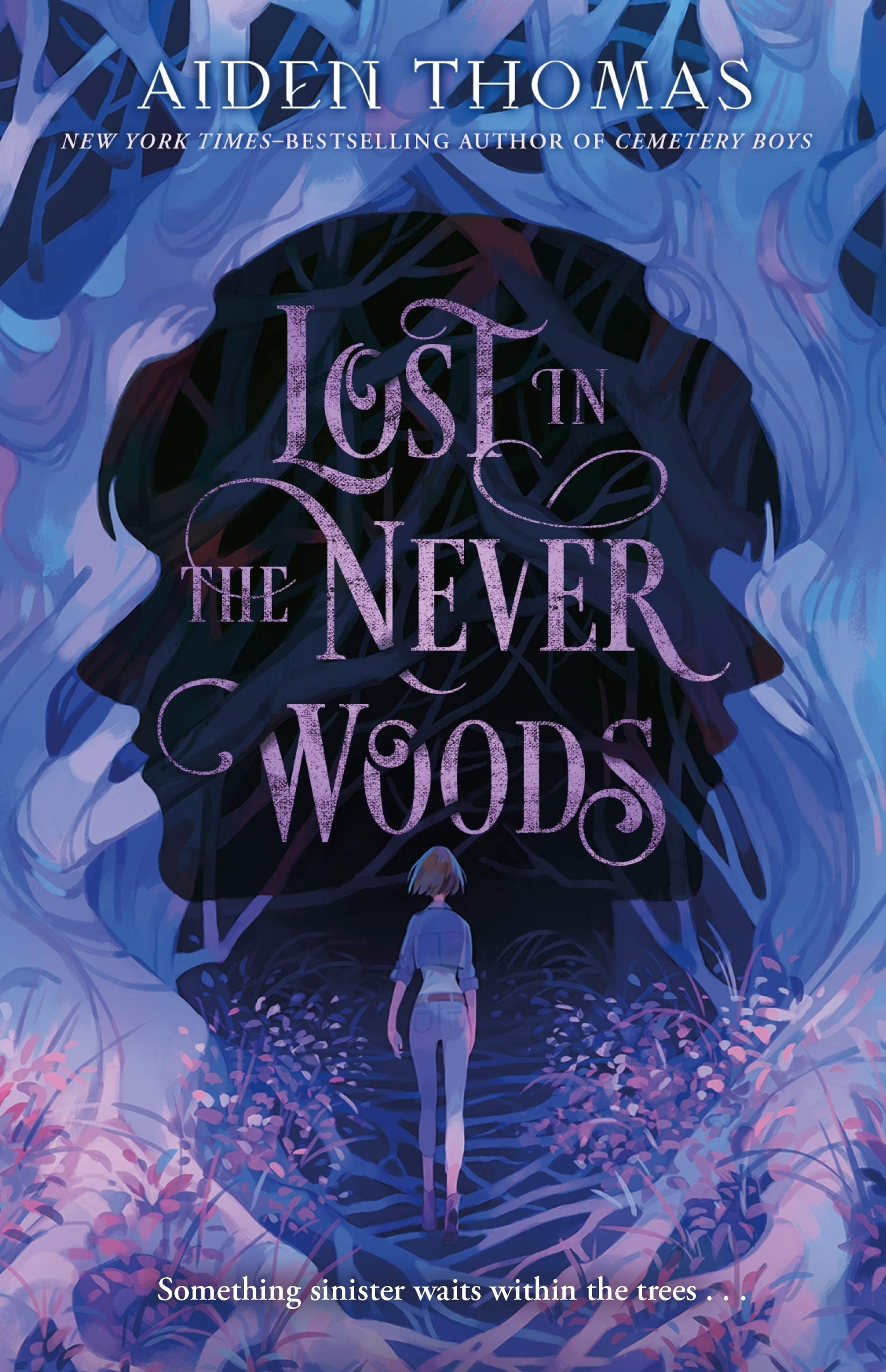 Amazon.com: Lost in the Never Woods: 9781250313973: Thomas, Aiden: Books