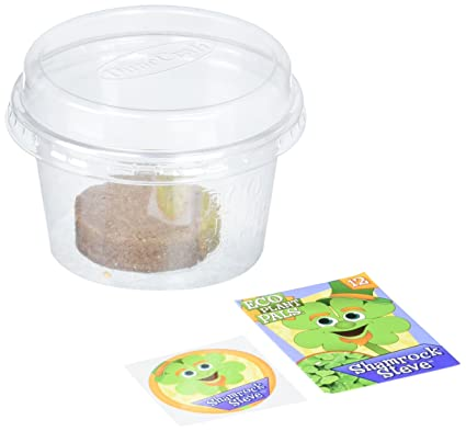 Dunecraft Shamrock Steve Science Kit  sc 1 st  Amazon.com & Amazon.com: Dunecraft Shamrock Steve Science Kit: Toys u0026 Games