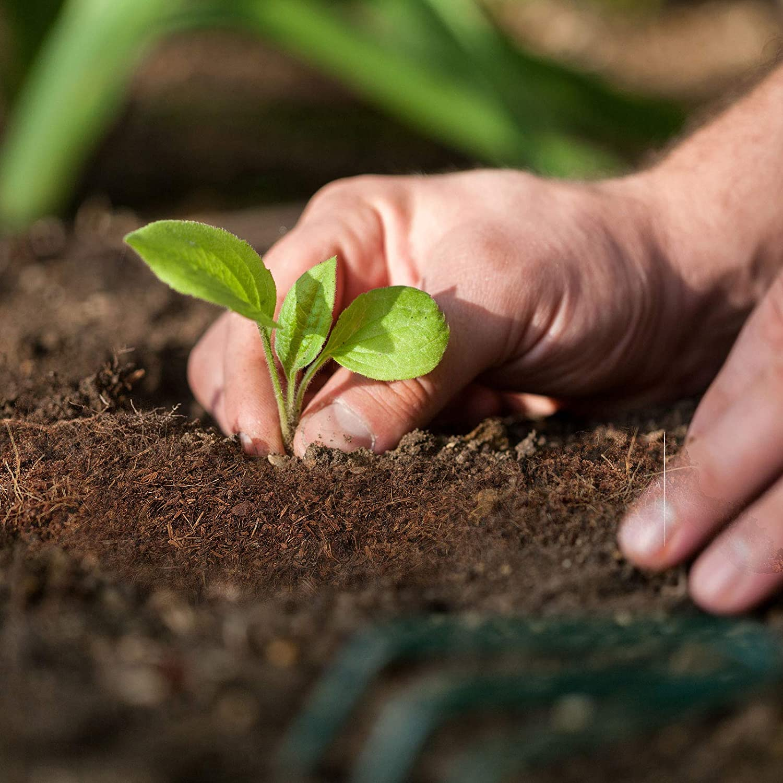 Brique de 70L Jardin casa pura Fibre de Coco Sans Tourbe /& 100/% Naturelle Terreaux Universel Pour Plantes Reptiles Substrats Pour Terrariums